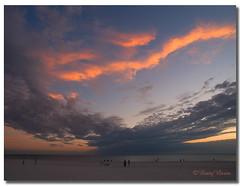 After the sunset.... (Betty Vlasiu) Tags: after sunset golf de mexico wildlife nature stpetersburg florida
