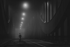 into the night II (digital_underground) Tags: bridge blackwhite hamburg elbbrücke urban street streetphotography fog mist haze germany