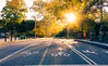 Follow the morning sun, let it guide you (RomanK Photography) Tags: autumn centralpark landscape manhattan nyc newyorkcity fall morning nature reflections road sonyalpha sunrise
