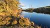 Last Light (Mac ind Óg) Tags: loch autumn achrayforest landscape sunset reflection waterscape queenelizabethforestpark lochlomondandthetrossachsnationalpark lochanreoidhte sun walking scotland aberfoyle forest