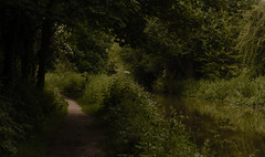 The door opens ..... (A child in the night) Tags: door stephengraham canal sanctuary peace countryside nature