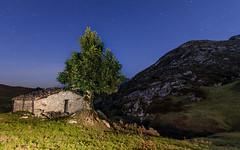 The tree (Eduardo Regueiro) Tags: asturias spain españa night star cabin cabaña tree loneliness soledad paz tranquilidad