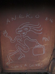 Aneko (Railroad Rat) Tags: cross canada train hopping country freight cn rail cp forest eastbound hobo jungle hoppers railroad catch out scan trace river trees sunset steel moniker graffiti art