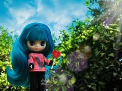 (Linayum) Tags: blythe petiteblythe takara doll dolls muñeca muñecas cute tree árbol sky linayum blythedoll
