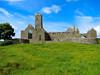 2017 Ireland - Quin Friary (murphman61) Tags: ireland éire eire clare anclár anchláir county church franciscan abbey cuinche ruin