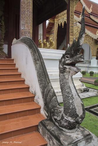 DRAC MITOLÒGIC (Tailàndia, agost de 2017)