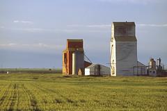 052-16 (George Hamlin) Tags: canada grain elevators alberta prairie photo decor george hamlin photography grass sky clouds nobleford