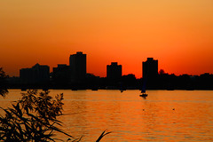 Timing is everything (ole_G) Tags: boston charlesriver esplanade serene peaceful glow golden