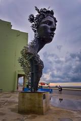 Wild Sculpture along the Malecon | Havana, Cuba (Six Seraphim Photographic Division) Tags: miguelsegura cuba havana habana nikon d750 travel caribbean island historical cuban libra libre