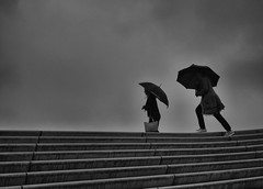stormy weather (Georgie Pauwels) Tags: weather stormy umbrella stairs clouds sky people street streetphotography moment candid olympus blackandwhite