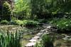 Stepping Stones (Amelia Joan) Tags: steppingstones stones water gardens japanesegardens spring summer green greenery