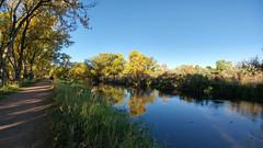 Heatherwood Trail along Boulder Creek at 75th St. (Boulder Flying Circus Birders) Tags: bouldercreekat75thst heatherwoodtrail bouldercountyopenspace gunbarrel colorado wildbirdboulder wildbirdcolorado wildbirdcompany formerwildbirdcenter notwildbirdsunlimited birdseed birdwalk saturdaybirders larklatch