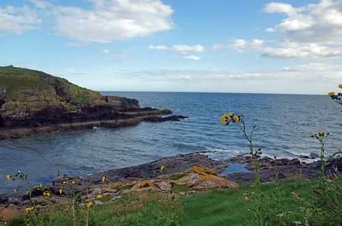 2017-08-26 09-09 Schottland 382 Collieston