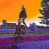 Penis envy #hydrangea #flower #bush #art #beautiful #colourful #cartoon #digitalart #drawing #popart #pop #psychedelic #sublime #stilllife #stills #surreal #trippy (muchlove2016) Tags: hydrangea flower bush art beautiful colourful cartoon digitalart drawing popart pop psychedelic sublime stilllife stills surreal trippy