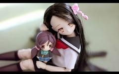 moe neko (Dollymoe) Tags: anime obitsu custom doll