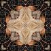 Autumn Kaleidoscope based on Wet Ash Leaves
