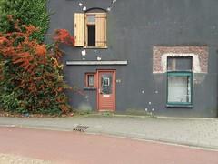 Fenster zum Hof. (QQ Vespa) Tags: fenster türen fensterläden fensterladen holland niederlande winterswijk tür haustür bepflanzung grün fassade gully immergrün