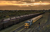 Class 37 37025 & 37421 Colas_PA230106 (Jonathan Irwin Photography) Tags: class 37 37025 37421 colas tees yard sunset network rail measurement train