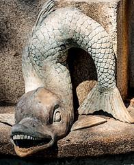 Parque El Capricho (detalle de fuente) (maricarmencorreas) Tags: piedra fuente pez parque capricho