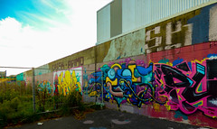 The grass is always greener on the other side of the fence (Steve Taylor (Photography)) Tags: cresk primo leeya art graffiti mural streetart tag fence colourful vivid newzealand nz southisland canterbury christchurch weeds grass