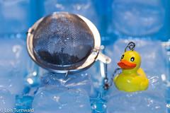 Iced Tea - HMM (11Jewels) Tags: canon tamronsp90mmf28divcusd teainfuser ice memberschoice macromonday foundinthekitchen memberschoicefoundinthekitchen