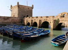 Morocco ML Tours (mayerderobert) Tags: travel tour morocco ml tours destination