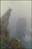 see fog (steve-jack) Tags: nikon f5 35mm kodak ektar film 135 bellinifoto monopart epson v500 c41 wales pembrokeshire elegug stacks mist fog sea rocks