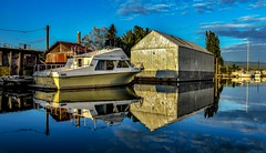 What makes me 'click' (Christie : Colour & Light Collection) Tags: river light blue sky clouds boats boating alouetteriver pittmeadows sun serene peaceful dock boathouse mooring moored romance vividcolours bc canada boat shed cabincruiser bluesky reflecttions nikond5600