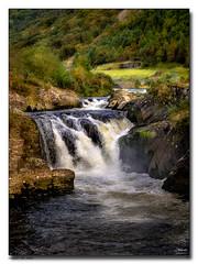 Rheidol Falls (jeremy willcocks) Tags: rheidolfalls waterfalls river wales country woods forest landscape colour jeremywillcocks wwwsouthwestscenesmeuk fujixpro2 xf50140mm uk