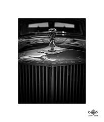 Scary Jag (silver/halide) Tags: grill johnbaker radiator jaguar mono monochrome blackandwhite bw classic classiccar mascot sundaylights