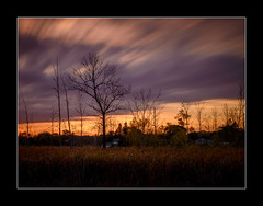 Another Take (Adam C Images) Tags: nikon d800 full frame dslr long exposure filters nisi canada global sunset warmth warm colours 10 stop nd big stopper lee 4 soft edge grad polarizer v5 filter holder south frontenac township kp trail verona ontario tamron 2470 vc f28 grass tree sky animal