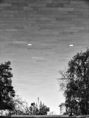 Santiago de Chile (Alejandro Bonilla) Tags: santiago chile street sony santiagodechile santiaguinos sam streetphotography santiagocentro sonya290 urban urbano urbana urbe fotografochileno city ciudad calle chilenos callejero bw blancoynegro bn blackandwhite black