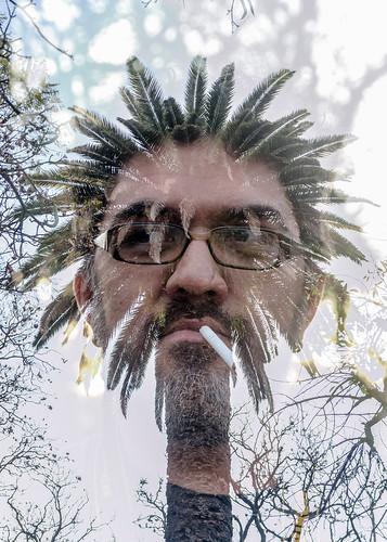 hombre palmera-doble exposicion