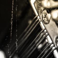 Spider Music (Silke Klimesch) Tags: macromonday memberschoicemusicalinstrument musicalinstrument hmm mm happymacromonday piano spidersilk spider cobweb dust strings klavier spinnenfäden spinnenseide spinnennetz staub saiten pian pianino zongora πιάνο piyano пианино 钢琴 toiledaraignée ragnatela telaraña pânzădepăianjen macro closeup blackandwhite schwarzweis noiretblanc blancoynegro biancoenegro pretoebranco svartvit чёрнобелый 黑白的 makrofotografie nahaufnahme olympus omd em5 mzuikodigitaled60mm128macro microfourthirds nikcollection silverefex