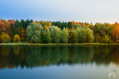 Autumn Landscape (Syuqor7) Tags: red moscow russia autumn park lake pond nature landscape reflection wateryreflection water day daylight nikon d7200 symmetry