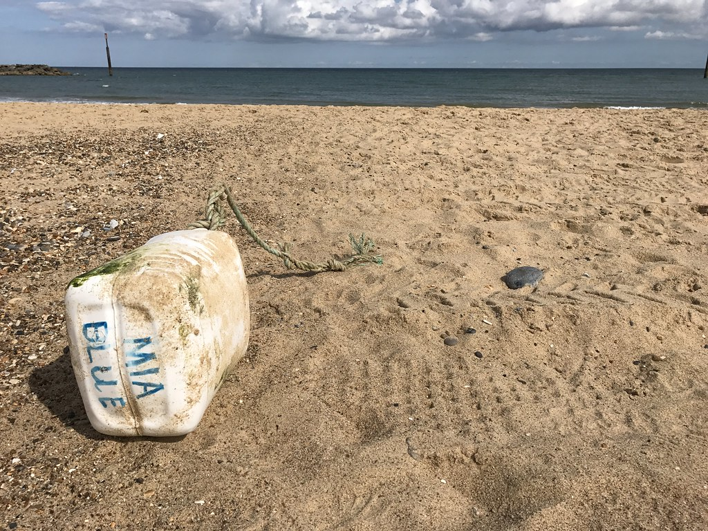 Sea Palling Beach Clean - Finds
