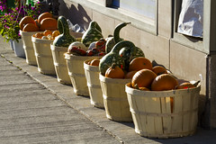 Baskets of pumpkins and gourds