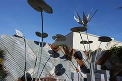 Metal Floating Lilly Pads (Heath & the B.L.T. boys) Tags: corrugated metal fence art flowers leaf nursery sanfrancisco california