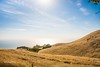 In the Afternoon (Studio281Photos) Tags: california marincounty mttamalpais mttam trojanpoint mountain bayarea grass golden ocean sky hills nature landscape vista afternoon sunshine travel vacation nikon nikond810 2470mm september