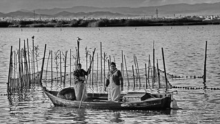 Hard working fishermen