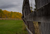 Autumn Colours and Country Fence Line (Matt 23998) Tags: autumn poplars fenceline farmyard beausejour manitoba fallcolours poplar fall farm fence