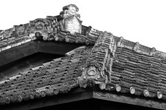 armadillo (..ChEn..) Tags: architecture roof japanese detail documentary record taiwan historical protect shelter pattern armor support weathering 歲月 日曬雨淋 safe 古蹟