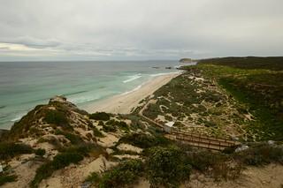 Kangaroo Island_Seal Bay_00020