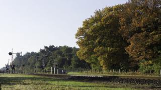 Spoorwegovergang met bomen in herfstkleuren