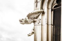 Ulm (Chez Eskay) Tags: badenwürttemberg deutschland germany lumixg20mmf17 olympusomdem10 ulm ulmermünster gargoyle cathedral dom münster