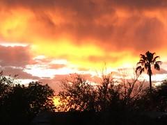 Sunshower (Carla Putnam) Tags: sunset sunshower peoria az arizona