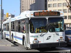 Winnipeg Transit #989 (vb5215's Transportation Gallery) Tags: winnipeg transit 2004 exoc transpo new flyer d60lf