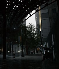 In the dark (Brandon ProjectZ) Tags: watchdogs ubisoft natural lighting mod windy overcast rain buildings roads trees