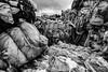 rubbish mountain (genelabo) Tags: harbour donau recycling waste rubbish abfall straubing sand monoton bw sw black white sony alpha trash dreck müll tree wood texture