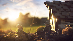 Dawn of a New Time (Kyle Hardisty) Tags: kyle hardisty lego photography macro minifigure mini fig custom lighting depth field canon wwii world war 2 ii brickarms brick arms grass dirt lakes california twigs rock rocks outdoor 1 bf1 battlfield battlefield british lee enfield 2017